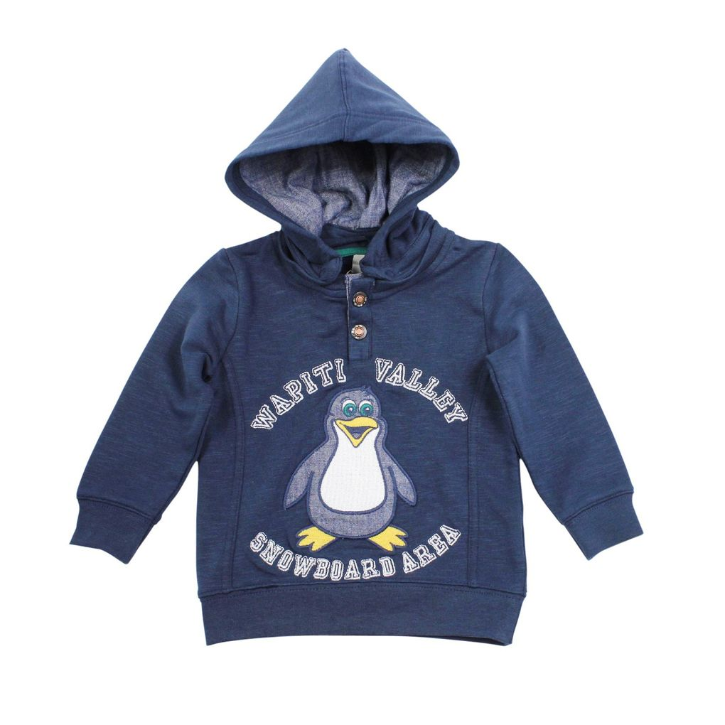 NAME IT Mini Jungen Kapuzen-Sweatshirt Oster