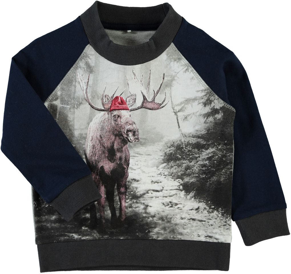 Name it Jungen Sweater mit Raglanärmel Elch-Fotoprint Nitwalle