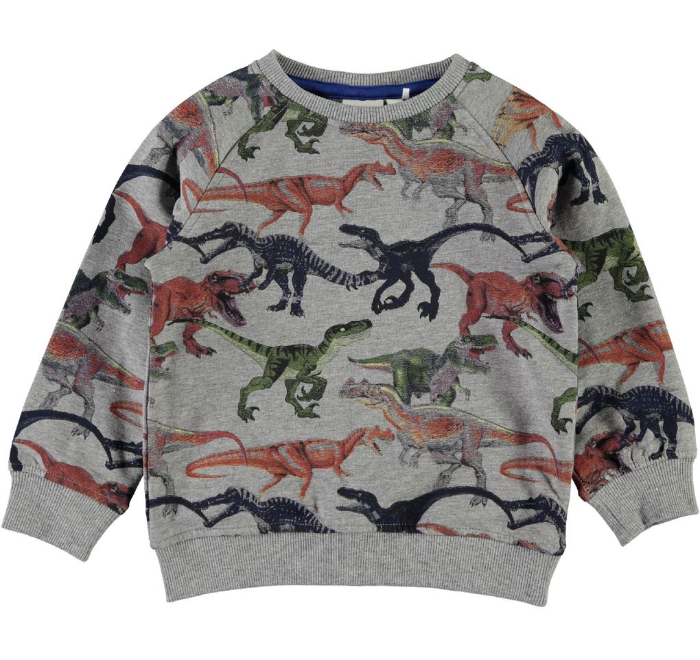 Name it Jungen warmer Sweater Dinosaurier Nitetrex